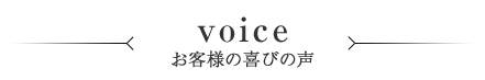 top_ttl_voice